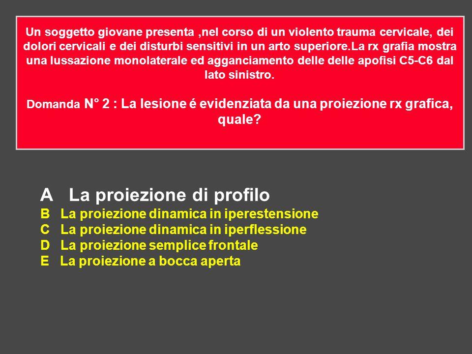 A La proiezione di profilo B La proiezione dinamica in iperestensione C La proiezione dinamica in iperflessione D La proiezione semplice frontale E La