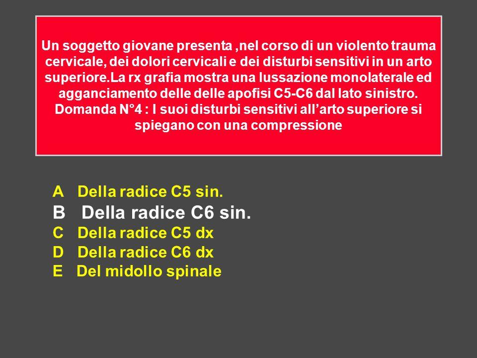 A Della radice C5 sin. B Della radice C6 sin. C Della radice C5 dx D Della radice C6 dx E Del midollo spinale Un soggetto giovane presenta,nel corso d