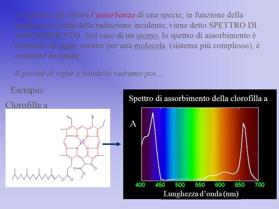 Un grafico che riporti l'assorbanza di una specie, in funzione della lunghezza d'onda della radiazione incidente, viene detto SPETTRO DI ASSORBIMENTO.