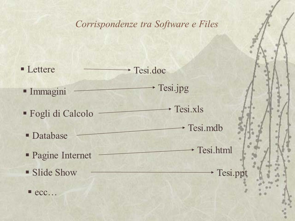 Corrispondenze tra Software e Files  Lettere  Immagini  Fogli di Calcolo  Database  Slide Show  ecc…  Pagine Internet Tesi.doc Tesi.jpg Tesi.xls Tesi.mdb Tesi.html Tesi.ppt