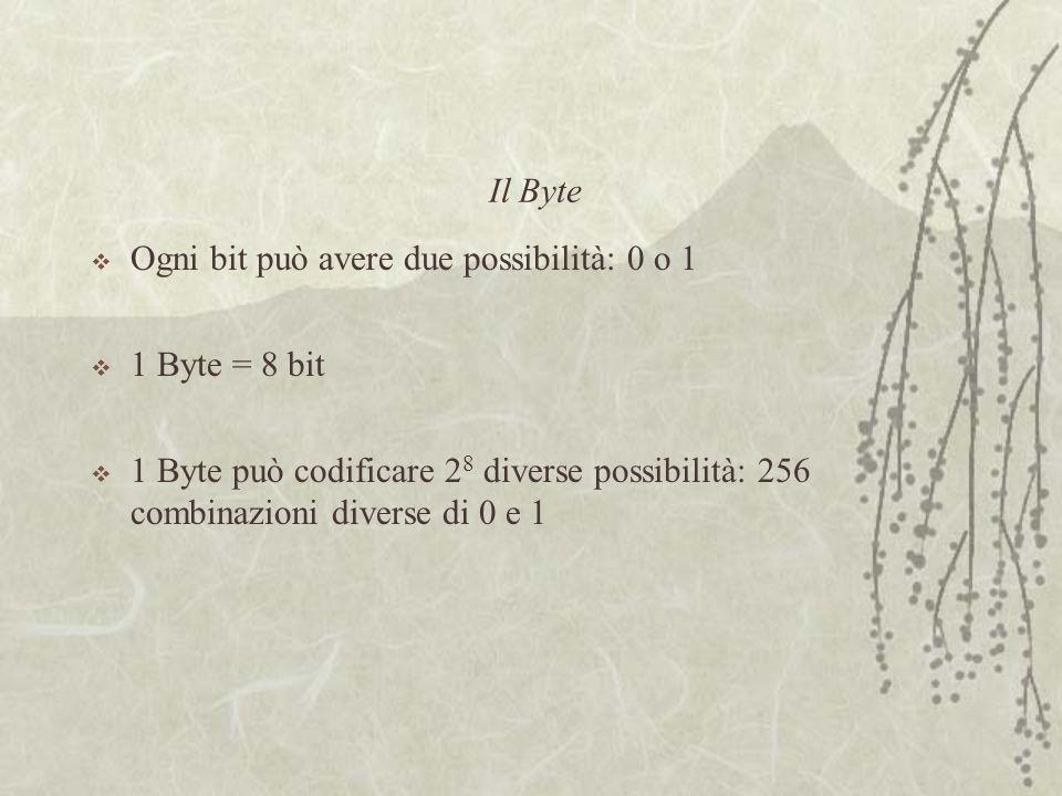 Il Byte  Ogni bit può avere due possibilità: 0 o 1  1 Byte = 8 bit  1 Byte può codificare 2 8 diverse possibilità: 256 combinazioni diverse di 0 e 1