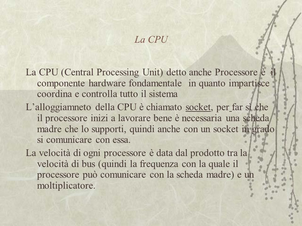 La CPU La CPU (Central Processing Unit) detto anche Processore è il componente hardware fondamentale in quanto impartisce coordina e controlla tutto i