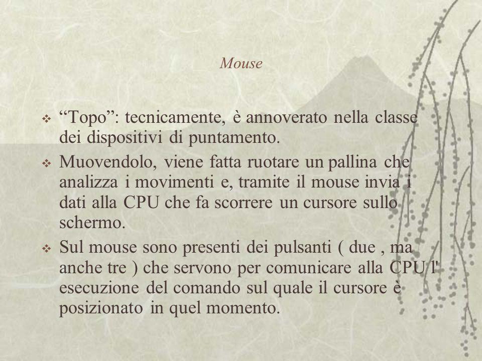 Mouse  Topo : tecnicamente, è annoverato nella classe dei dispositivi di puntamento.