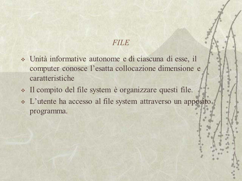 FILE  Unità informative autonome e di ciascuna di esse, il computer conosce l'esatta collocazione dimensione e caratteristiche  Il compito del file system è organizzare questi file.