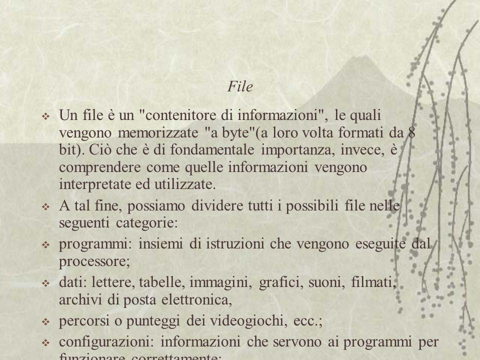 File  Un file è un contenitore di informazioni , le quali vengono memorizzate a byte (a loro volta formati da 8 bit).
