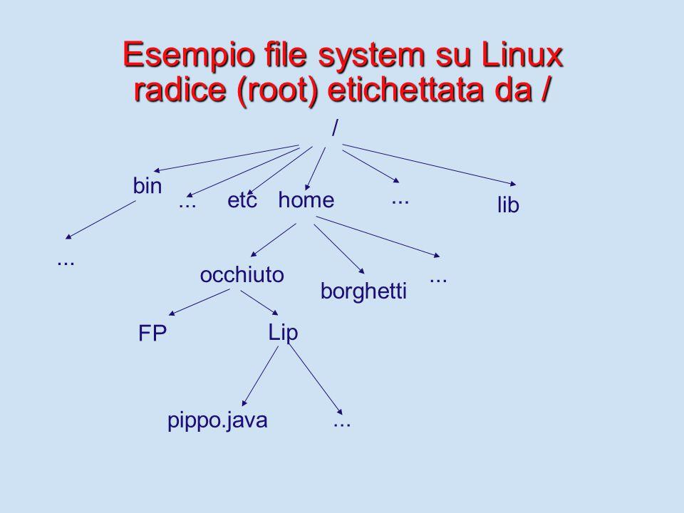 Esempio file system su Linux radice (root) etichettata da / / bin occhiuto home pippo.java FP Lip...