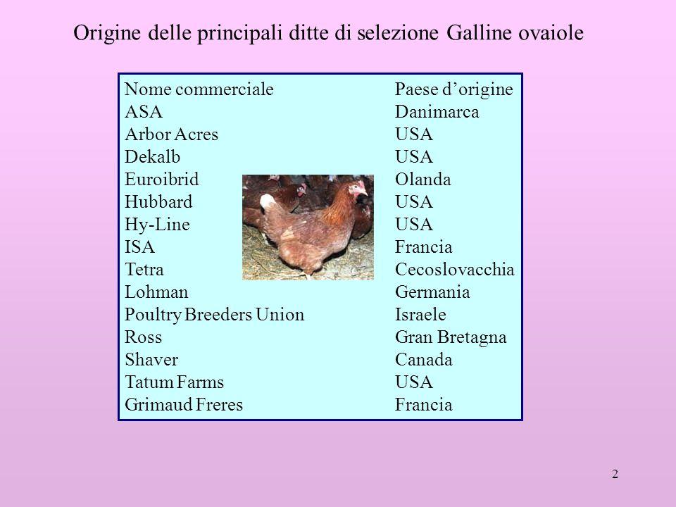 2 Origine delle principali ditte di selezione Galline ovaiole Nome commercialePaese d'origine ASADanimarca Arbor AcresUSA DekalbUSA EuroibridOlanda Hu