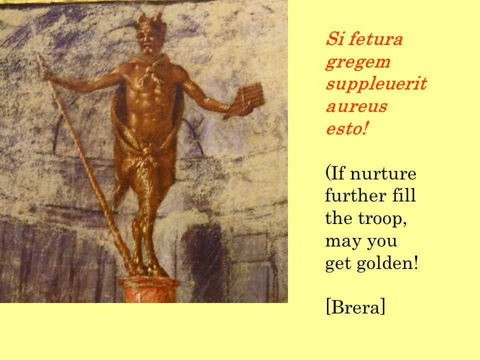 Si fetura gregem suppleuerit aureus esto! (If nurture further fill the troop, may you get golden! [Brera]