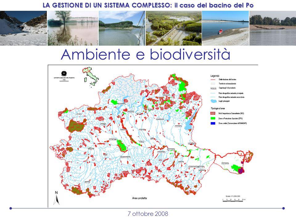 LA GESTIONE DI UN SISTEMA COMPLESSO: il caso del bacino del Po 7 ottobre 2008 Ambiente e biodiversità