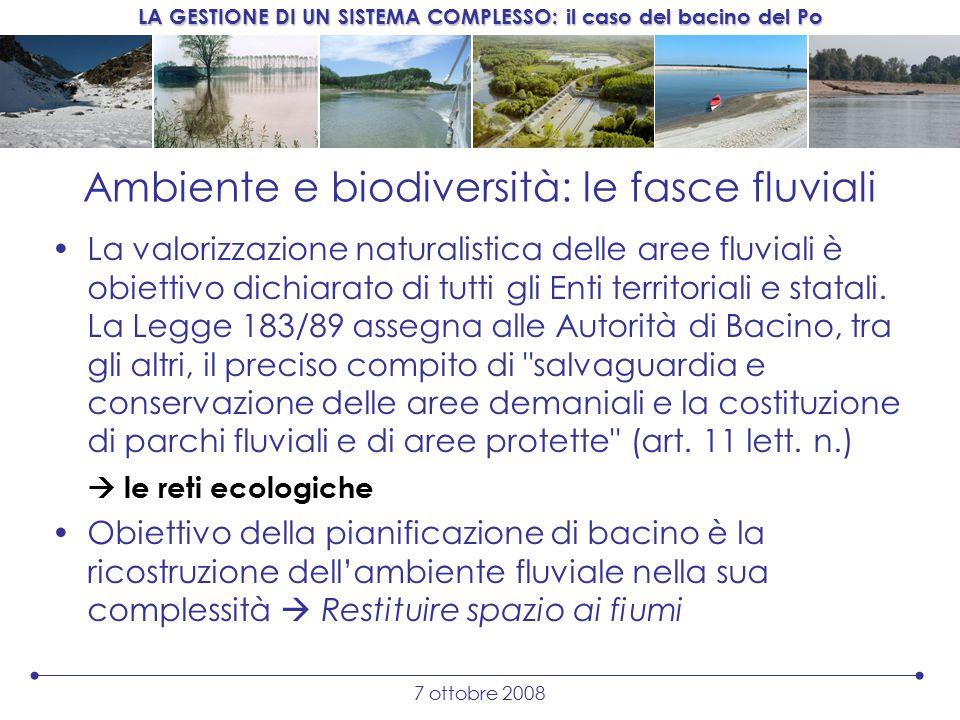 LA GESTIONE DI UN SISTEMA COMPLESSO: il caso del bacino del Po 7 ottobre 2008 Ambiente e biodiversità: le fasce fluviali La valorizzazione naturalistica delle aree fluviali è obiettivo dichiarato di tutti gli Enti territoriali e statali.