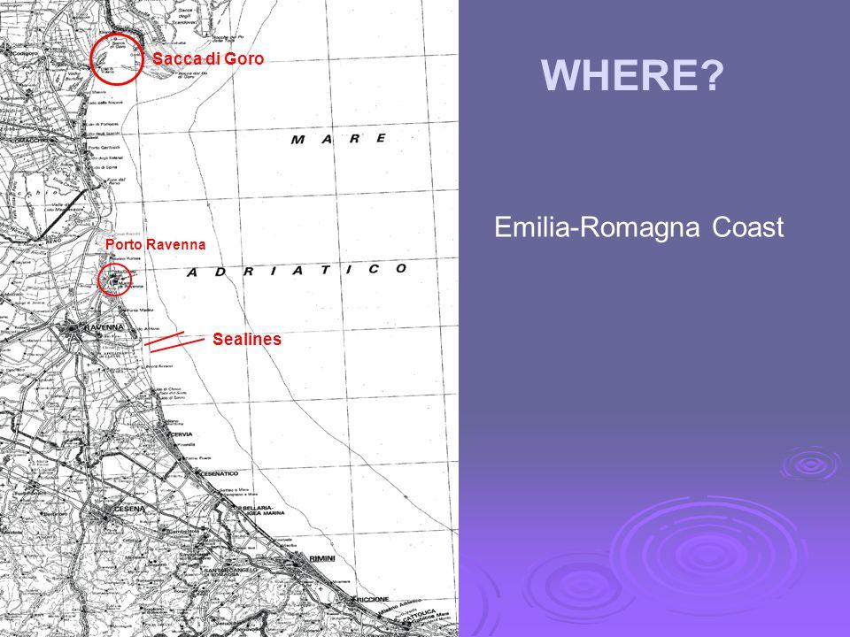 Porto Ravenna Sacca di Goro WHERE Sealines Emilia-Romagna Coast