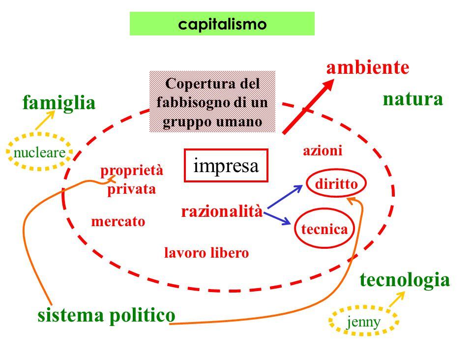 capitalismo mercato proprietà privata ambiente Copertura del fabbisogno di un gruppo umano natura tecnologia sistema politico famiglia impresa raziona