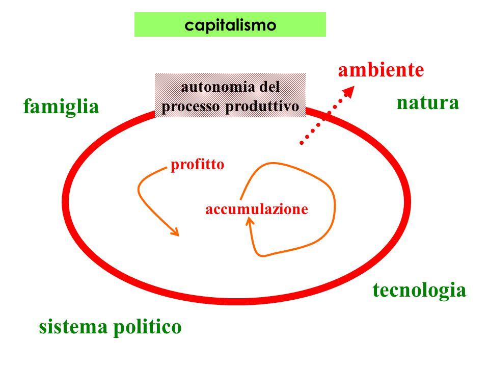 capitalismo ambiente autonomia del processo produttivo natura tecnologia sistema politico famiglia profitto accumulazione