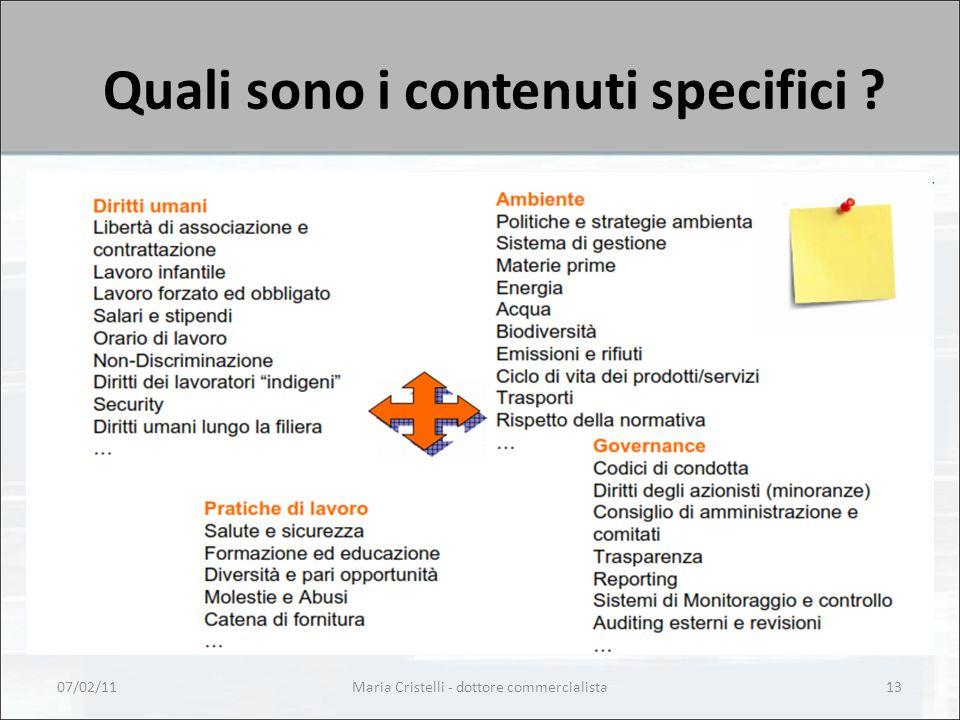 Quali sono i contenuti specifici 07/02/11Maria Cristelli - dottore commercialista13