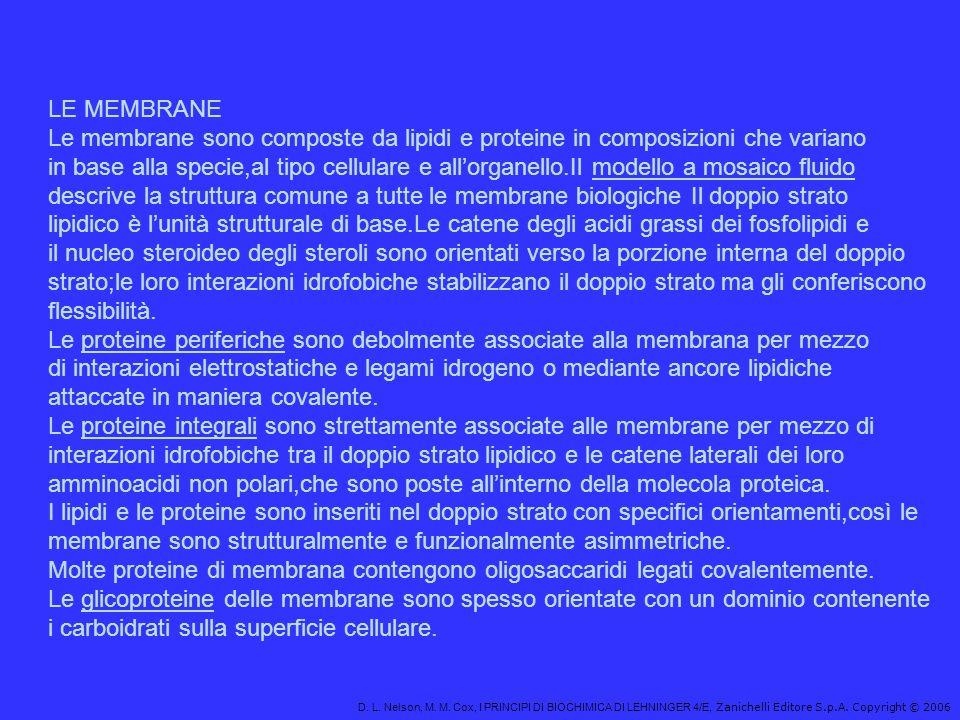 D. L. Nelson, M. M. Cox, I PRINCIPI DI BIOCHIMICA DI LEHNINGER 4/E, Zanichelli Editore S.p.A. Copyright © 2006 LE MEMBRANE Le membrane sono composte d