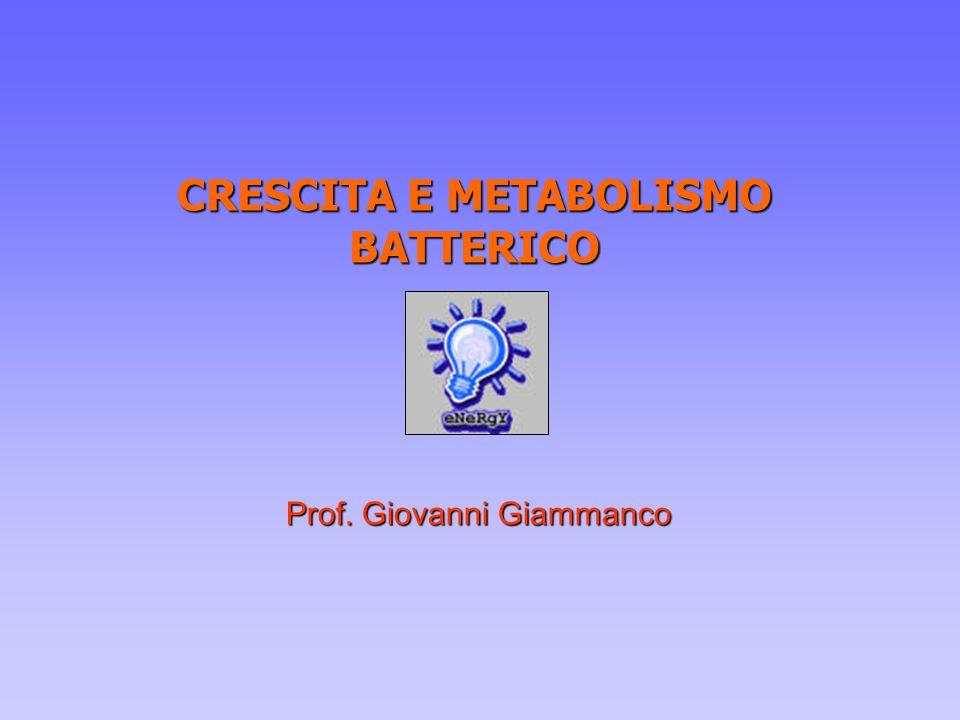 CRESCITA E METABOLISMO BATTERICO Prof. Giovanni Giammanco