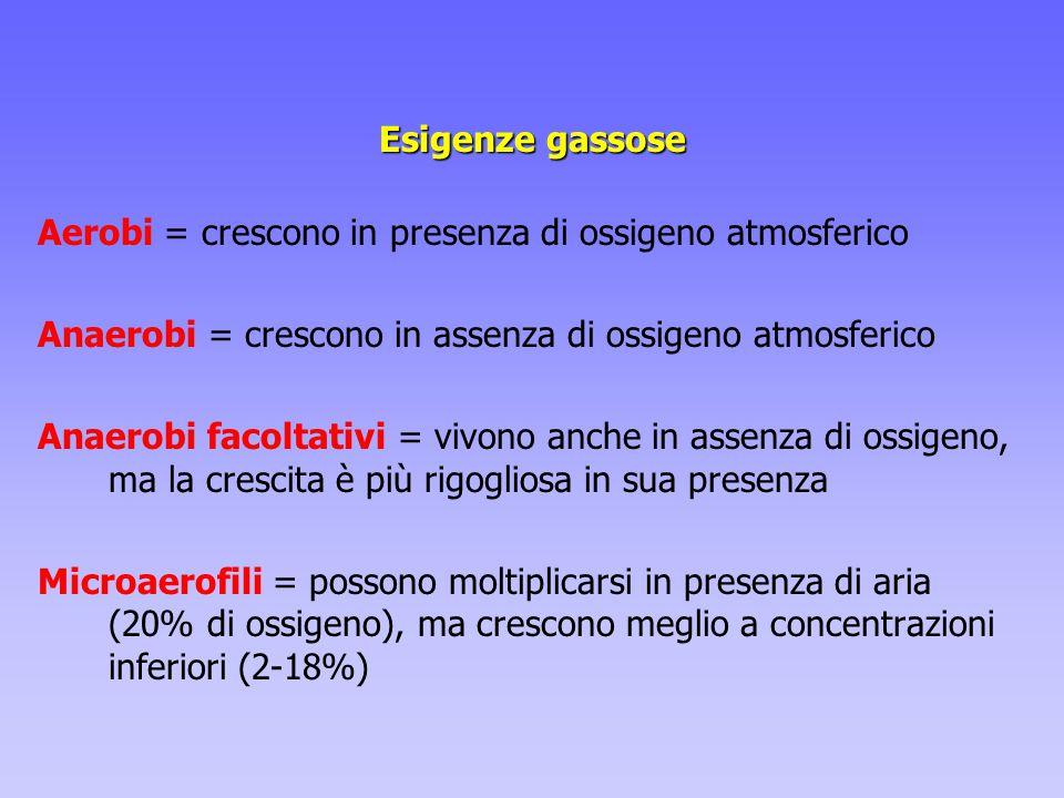 Esigenze gassose Aerobi = crescono in presenza di ossigeno atmosferico Anaerobi = crescono in assenza di ossigeno atmosferico Anaerobi facoltativi = v