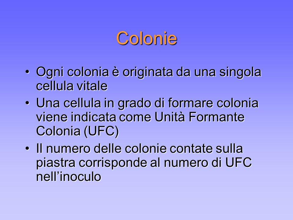 Colonie Ogni colonia è originata da una singola cellula vitaleOgni colonia è originata da una singola cellula vitale Una cellula in grado di formare c