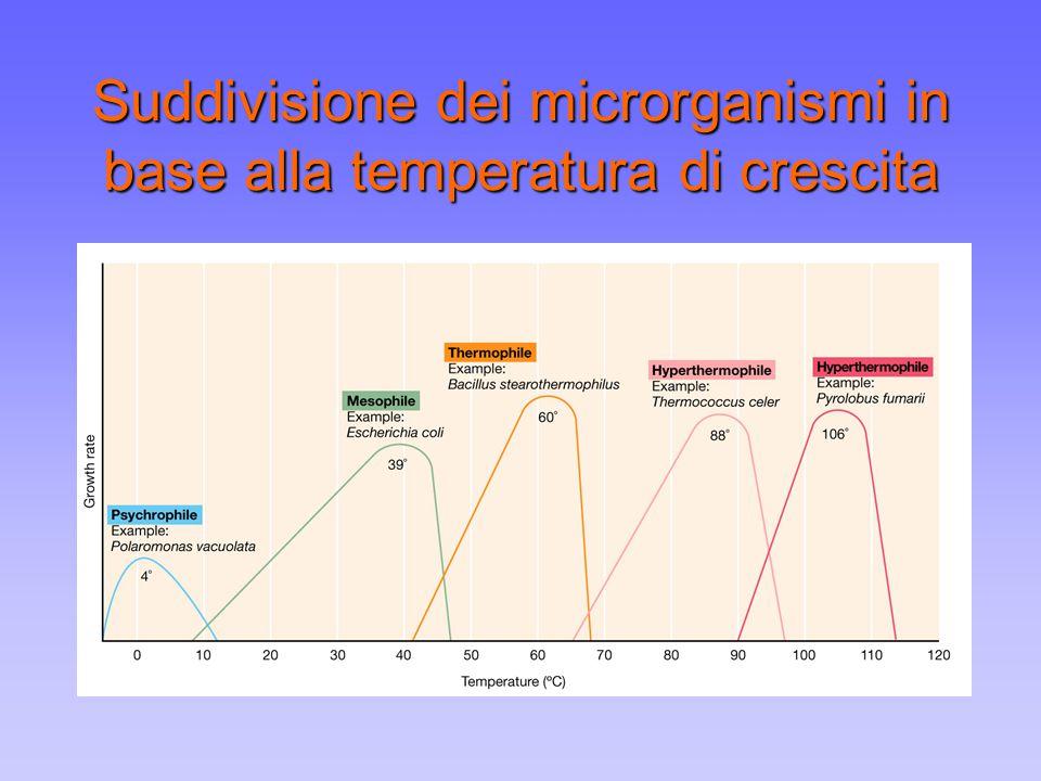 pH e crescita microbica