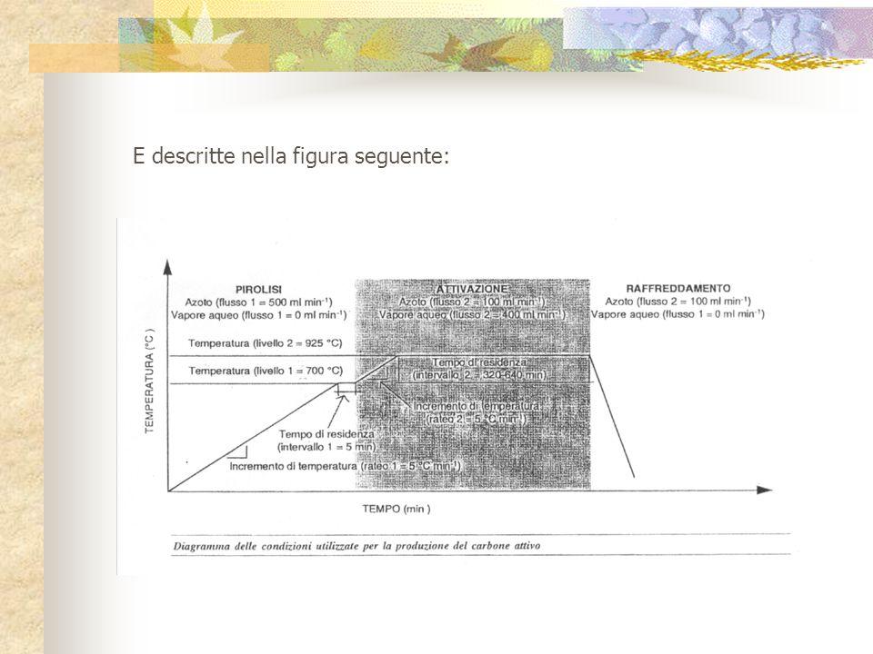 Condizioni sperimentali utilizzate per la produzione d'alcuni tipi di CA Queste sono riportate nella seguente tabella: Parametro Carbone attivo S320S640N400 Materia prima SSN Massa iniziale (g)200.0 50.0 Incremento di temperatura (rateo 1)(°C min -1 )555 Temperatura (livello 1)(°C)700 Tempo di residenza (intervallo 1)(min)555 Azoto (flusso 1)(ml min -1 )500 Vapore acqueo (flusso 1)(ml min -1 )0.0 Incremento di temperatura (rateo 2)(°C min -1 )555 Temperatura (livello 2)(°C)925 Tempo di residenza (intervallo 2)(min)320640400 Azoto (flusso 2)(ml min -1 )100 Vapore acqueo (flusso 2)(ml min -1 )400 S = frammenti di gomma di pneumatico contenenti fibra sintetica e maglia d'acciaio F = fibra sintetica di rinforzo del pneumatico con residui di gomma