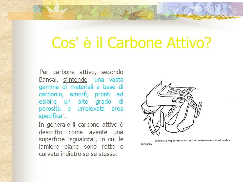 Cos ' è il Carbone Attivo.