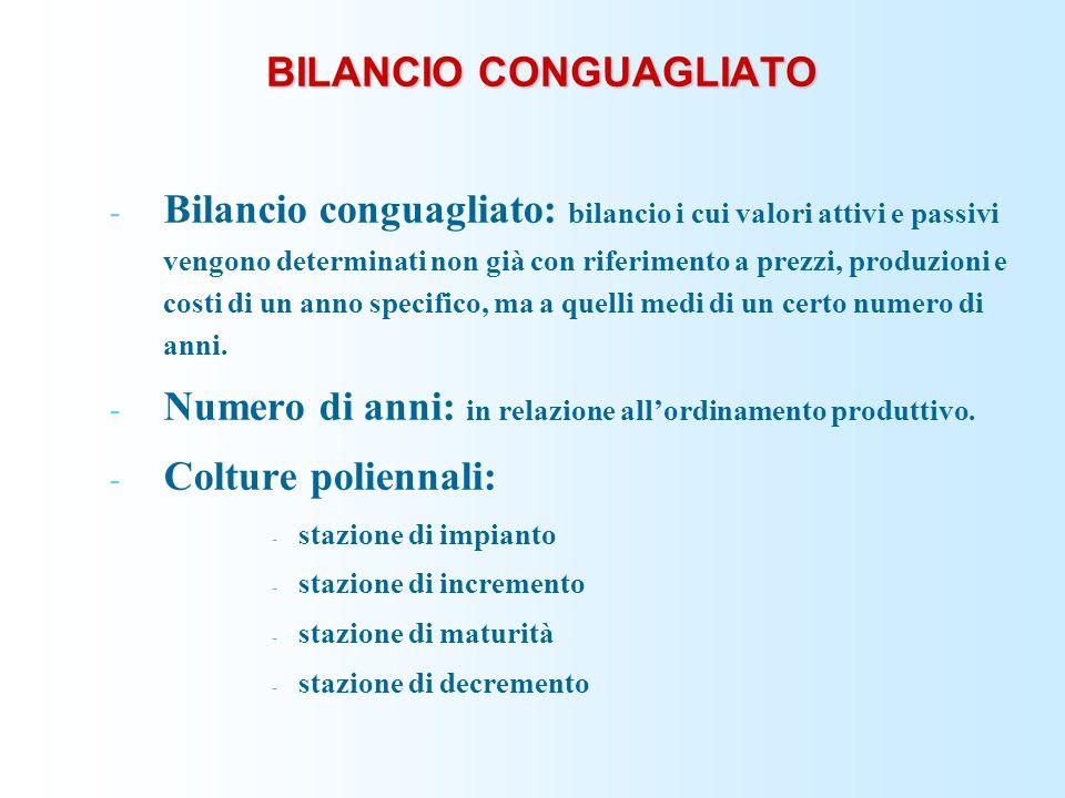 BILANCIO CONGUAGLIATO - Bilancio conguagliato: bilancio i cui valori attivi e passivi vengono determinati non già con riferimento a prezzi, produzioni