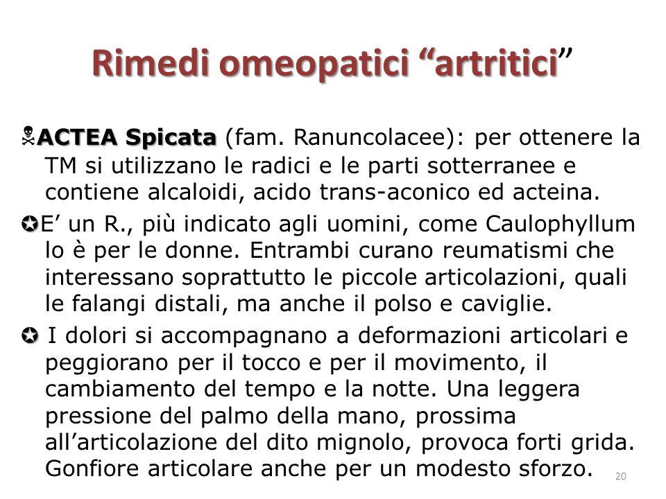 """Rimedi omeopatici """"artritici Rimedi omeopatici """"artritici"""" ACTEA Spicata  ACTEA Spicata (fam. Ranuncolacee): per ottenere la TM si utilizzano le radi"""