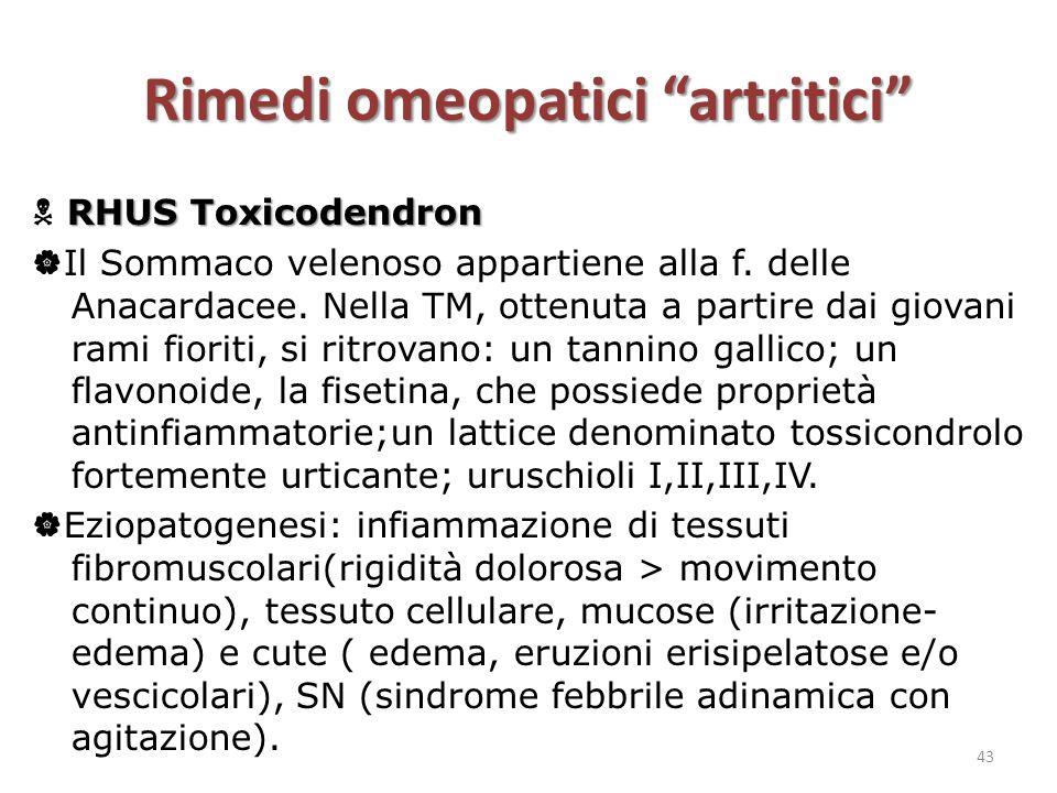 """Rimedi omeopatici """"artritici"""" RHUS Toxicodendron  RHUS Toxicodendron  Il Sommaco velenoso appartiene alla f. delle Anacardacee. Nella TM, ottenuta a"""