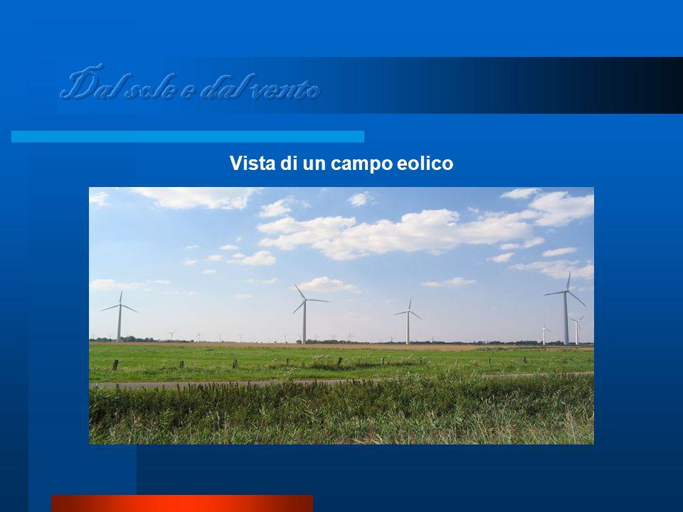 Vista di un campo eolico