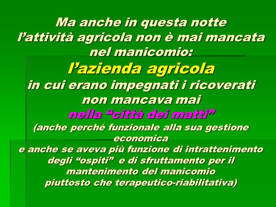 Ma anche in questa notte l'attività agricola non è mai mancata nel manicomio: l'azienda agricola in cui erano impegnati i ricoverati non mancava mai n