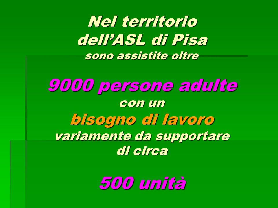 Nel territorio dell'ASL di Pisa sono assistite oltre 9000 persone adulte con un bisogno di lavoro variamente da supportare di circa 500 unità