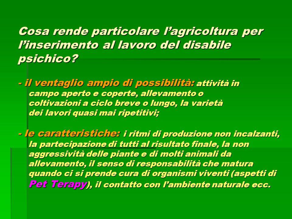Cosa rende particolare l'agricoltura per l'inserimento al lavoro del disabile psichico? - il ventaglio ampio di possibilità: attività in campo aperto