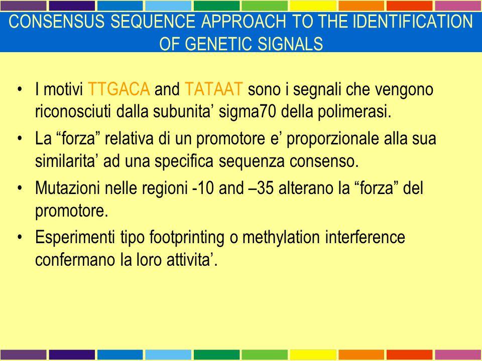 """I motivi TTGACA and TATAAT sono i segnali che vengono riconosciuti dalla subunita' sigma70 della polimerasi. La """"forza"""" relativa di un promotore e' pr"""