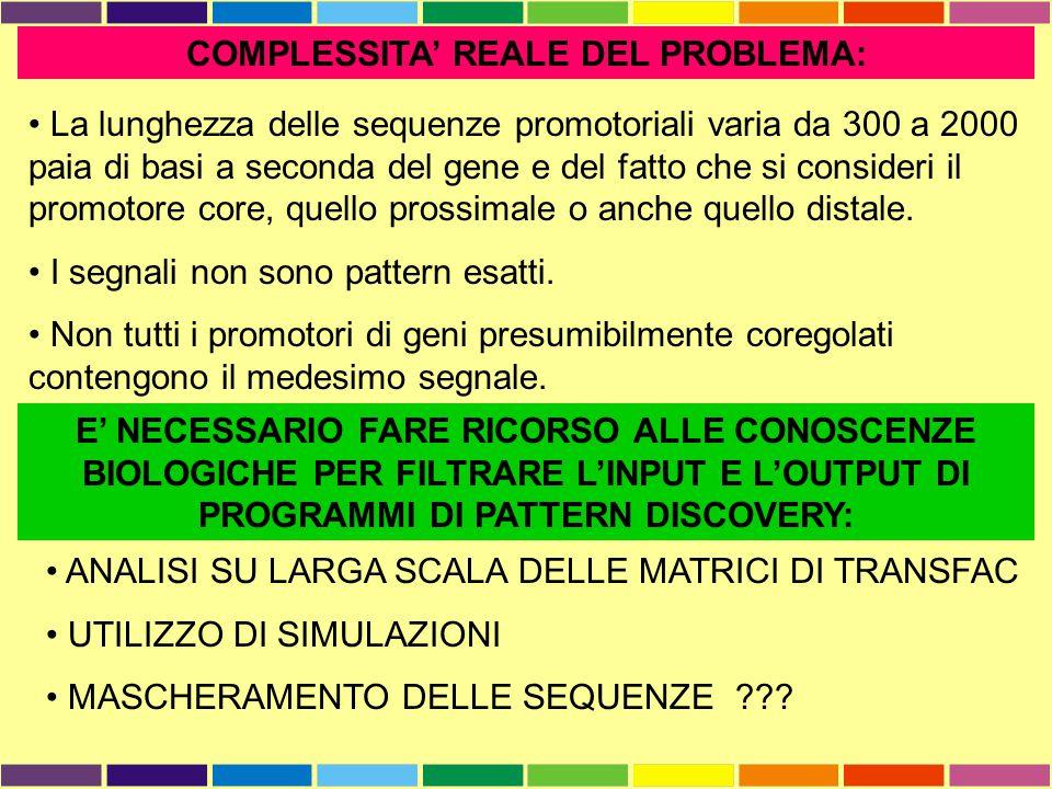 COMPLESSITA' REALE DEL PROBLEMA: La lunghezza delle sequenze promotoriali varia da 300 a 2000 paia di basi a seconda del gene e del fatto che si consi