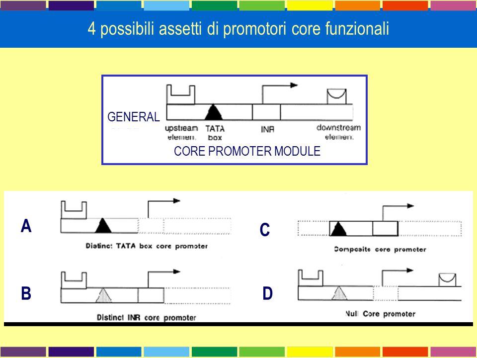 Cerca parole non-degenerate, sovrarappresentate in un gruppo di sequenze (positive set) rispetto ad un gruppo di controllo (negative set)