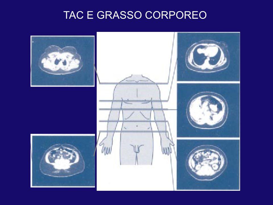 TAC E GRASSO CORPOREO