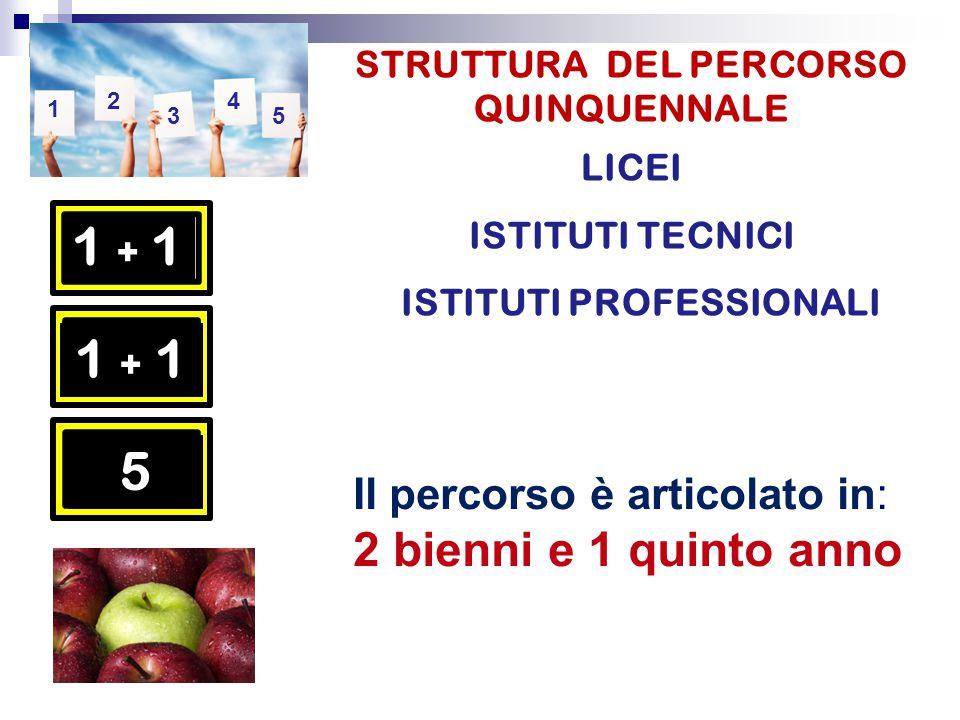 5 Il percorso è articolato in: 2 bienni e 1 quinto anno STRUTTURA DEL PERCORSO QUINQUENNALE LICEI ISTITUTI TECNICI ISTITUTI PROFESSIONALI 1 + 11 + 1 1 + 1 5 1 2 3 4 5