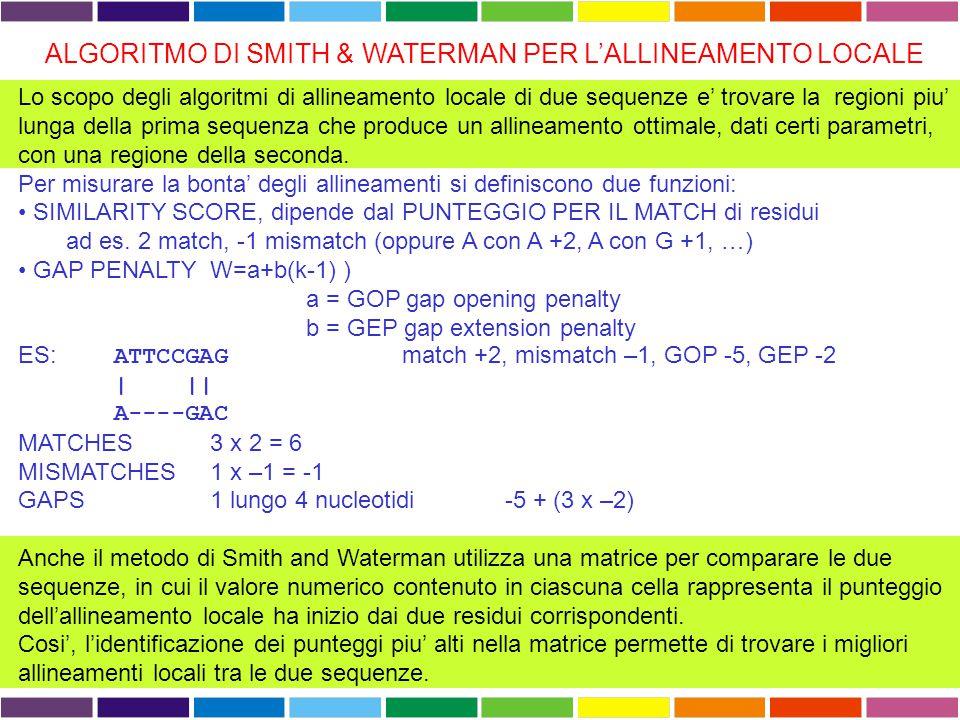 ALGORITMO DI SMITH & WATERMAN PER L'ALLINEAMENTO LOCALE Lo scopo degli algoritmi di allineamento locale di due sequenze e' trovare la regioni piu' lun