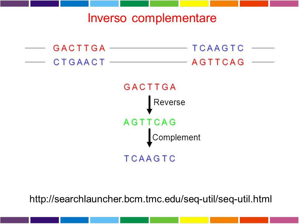 Inverso complementare G A C T T G A T C A A G T C C T G A A C T A G T T C A G G A C T T G A A G T T C A G T C A A G T C Reverse Complement http://searchlauncher.bcm.tmc.edu/seq-util/seq-util.html