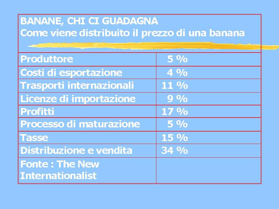 1/4 delle banane del mondo sono destinate al commercio internazionale La banana da dollari : rappresenta l'80% percento dei frutti mangiati al Nord ed è controllata da tre compagnie.