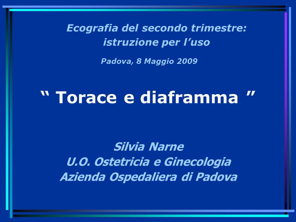 Torace e diaframma Silvia Narne U.O.