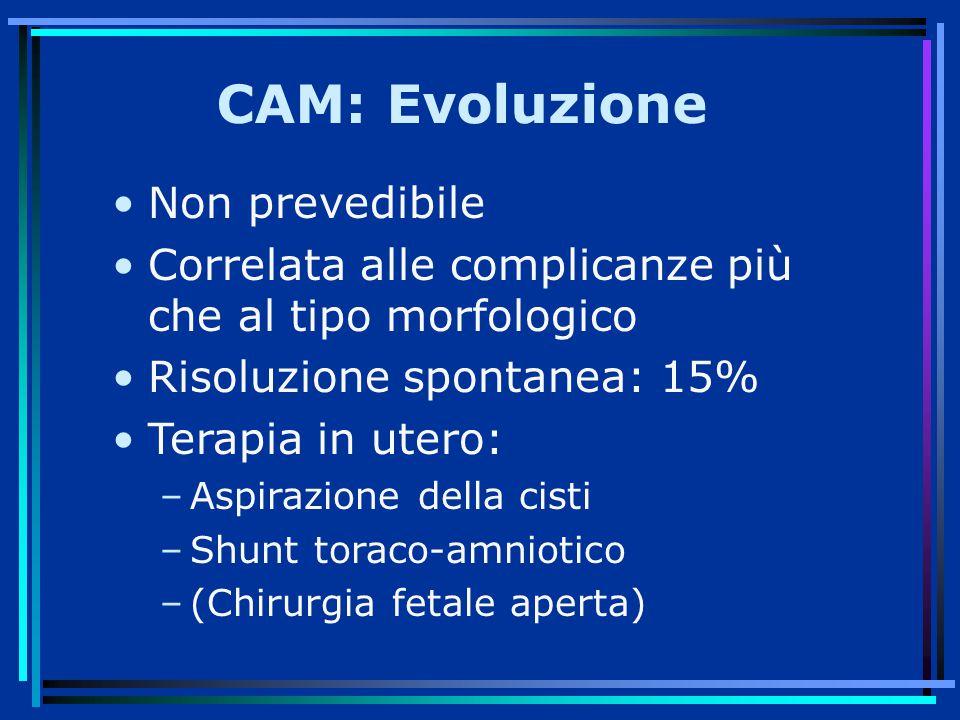 CAM: Evoluzione Non prevedibile Correlata alle complicanze più che al tipo morfologico Risoluzione spontanea: 15% Terapia in utero: –Aspirazione della cisti –Shunt toraco-amniotico –(Chirurgia fetale aperta)