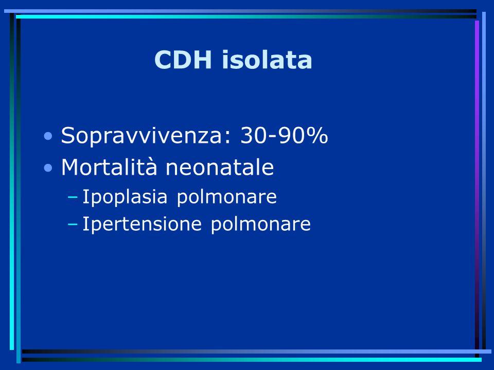 CDH isolata Sopravvivenza: 30-90% Mortalità neonatale –Ipoplasia polmonare –Ipertensione polmonare