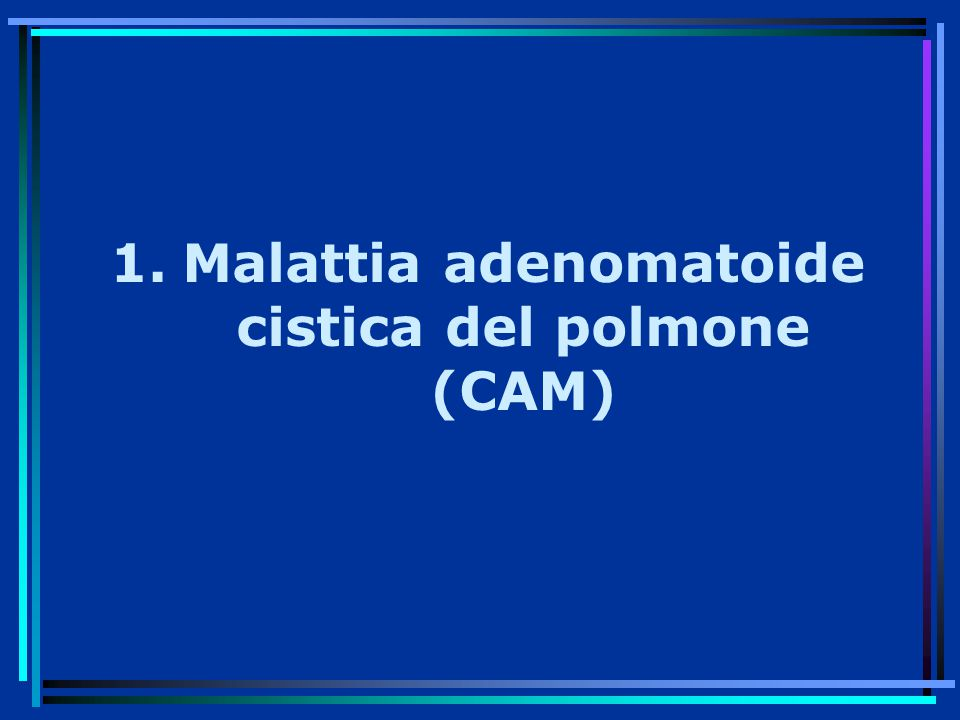 1.Malattia adenomatoide cistica del polmone (CAM)