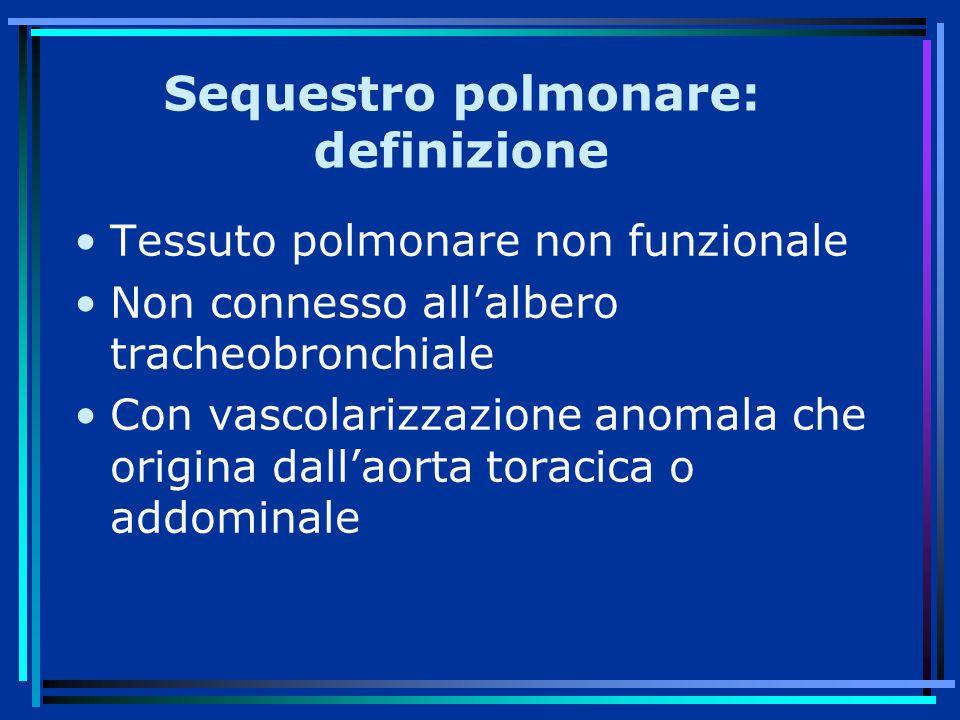 Sequestro polmonare: definizione Tessuto polmonare non funzionale Non connesso all'albero tracheobronchiale Con vascolarizzazione anomala che origina dall'aorta toracica o addominale