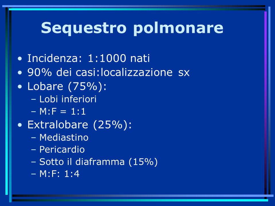 Sequestro polmonare Incidenza: 1:1000 nati 90% dei casi:localizzazione sx Lobare (75%): –Lobi inferiori –M:F = 1:1 Extralobare (25%): –Mediastino –Pericardio –Sotto il diaframma (15%) –M:F: 1:4