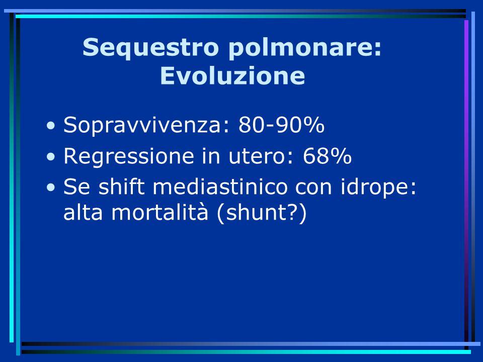 Sequestro polmonare: Evoluzione Sopravvivenza: 80-90% Regressione in utero: 68% Se shift mediastinico con idrope: alta mortalità (shunt?)