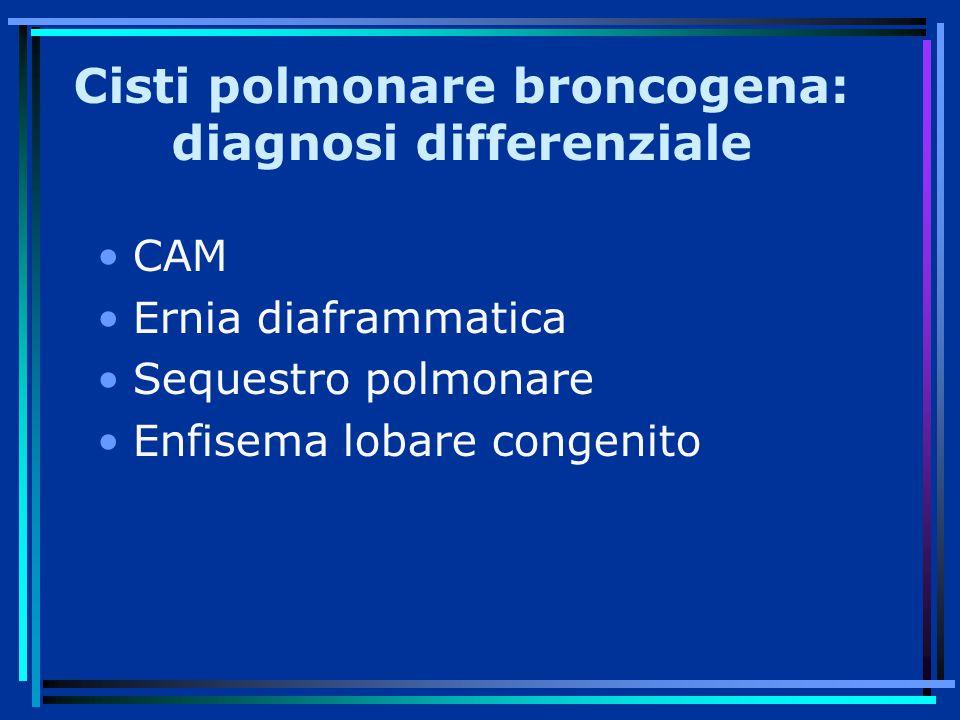 Cisti polmonare broncogena: diagnosi differenziale CAM Ernia diaframmatica Sequestro polmonare Enfisema lobare congenito