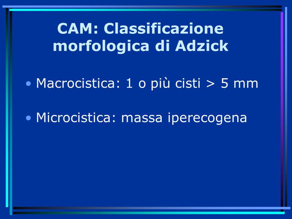 CAM: Classificazione morfologica di Adzick Macrocistica: 1 o più cisti > 5 mm Microcistica: massa iperecogena