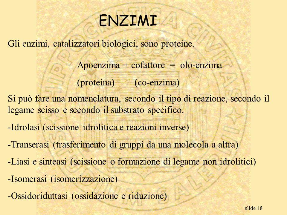 slide 18 ENZIMI Gli enzimi, catalizzatori biologici, sono proteine. Apoenzima + cofattore = olo-enzima (proteina)(co-enzima) Si può fare una nomenclat